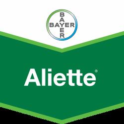 Fungicid Aliette Bayer - 6 kg.