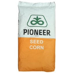 Seminte porumb Pioneer Silomax 0725 - 80.000 boabe