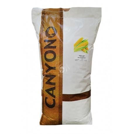 Samanta porumb porumb dulce Golden Bantam - 10 kg.