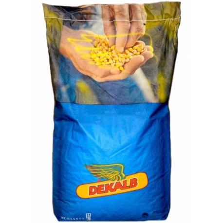 Seminte porumb Dekalb DKC 4670 - 80.000 boabe