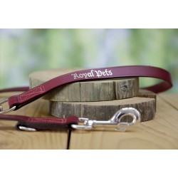 Lesa pentru caini Kerbl Royal Pets - 200 cm × 20 mm