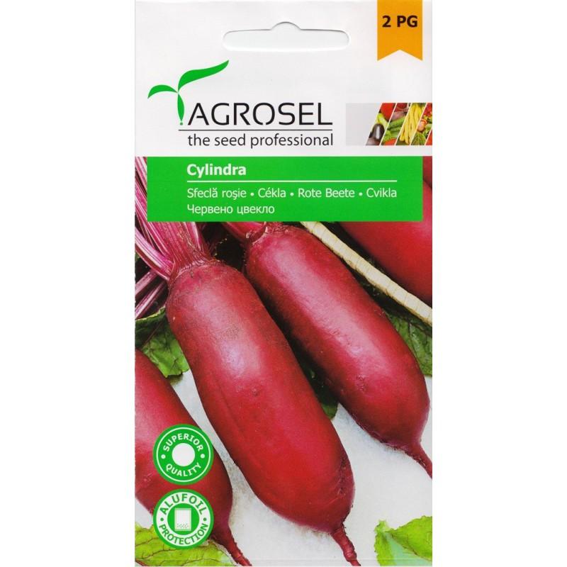 Seminte sfecla rosie Cylindra - plic 5 gr.
