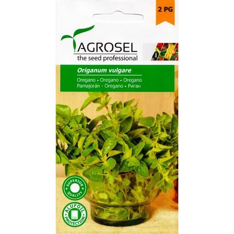 Seminte oregano Agrosel - 1 gr.