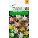 Seminte flori Caldarusa melanj Agrosel - 0,3 gr.