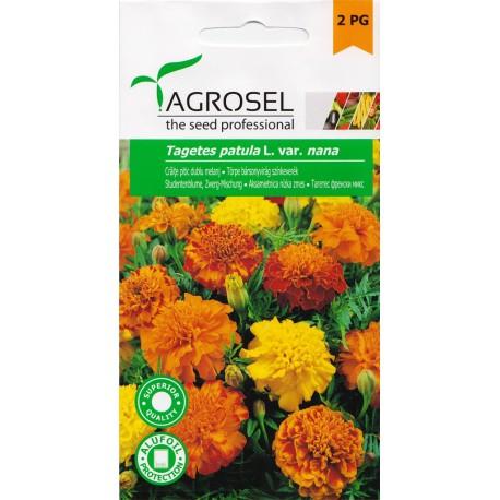 Seminte flori Craite pitic melanj Agrosel - 1,3 gr.