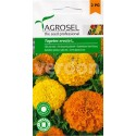 Seminte flori Craite urias melanj Agrosel - 1,5 gr.