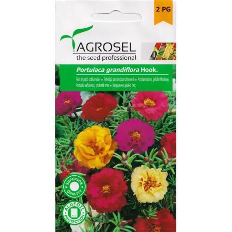 Seminte Flori Piatra dublu melanj Agrosel - 0,6 gr.