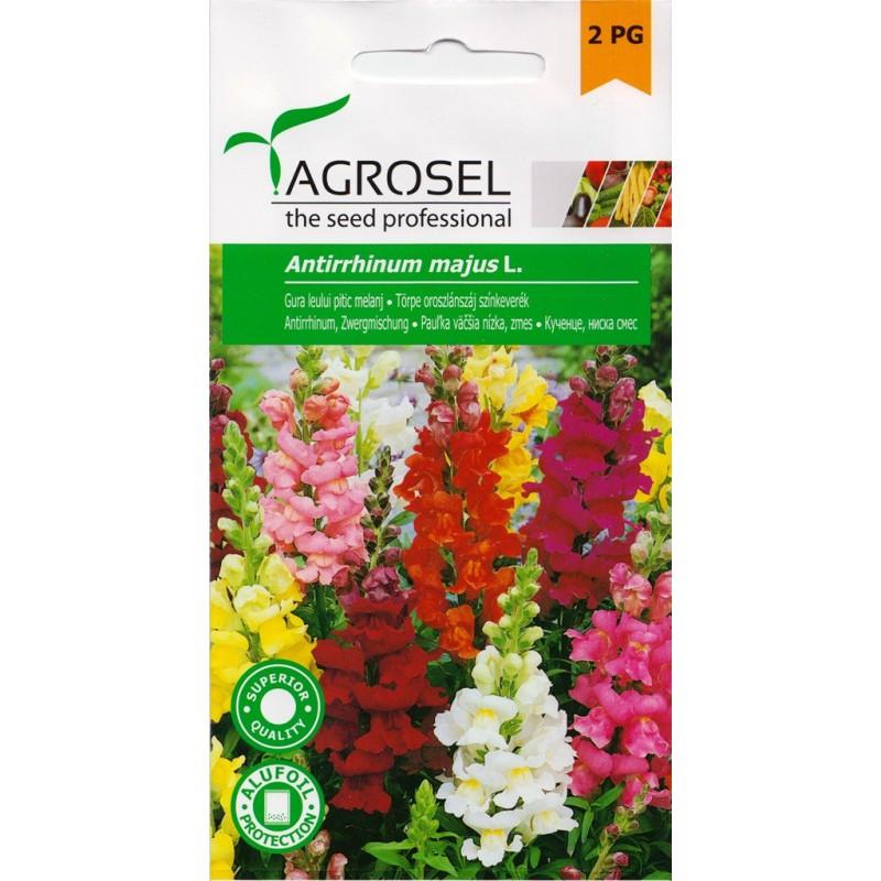 Seminte flori Gura Leului melanj Agrosel - 1 gr.