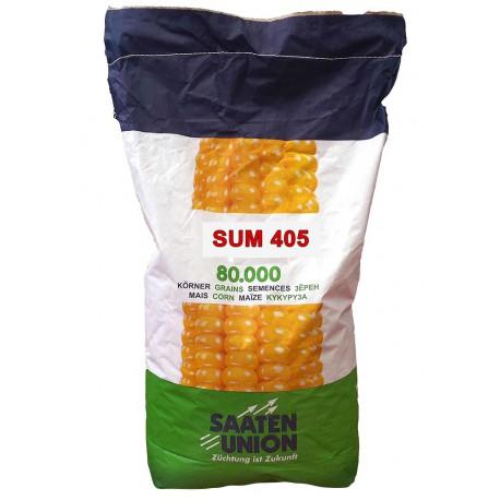 Seminte porumb Sum 405 - Saaten Union (FAO 400)