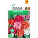 Seminte flori Muscate melanj Agrosel - 0,08 gr.