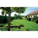 Ingrasamant Gazon Landscaper Pro MAINTENANCE - 15 kg