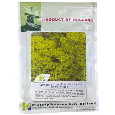 Seminte patrunjel cu frunza creata Moss Curled PPZ Olanda - 50 gr.