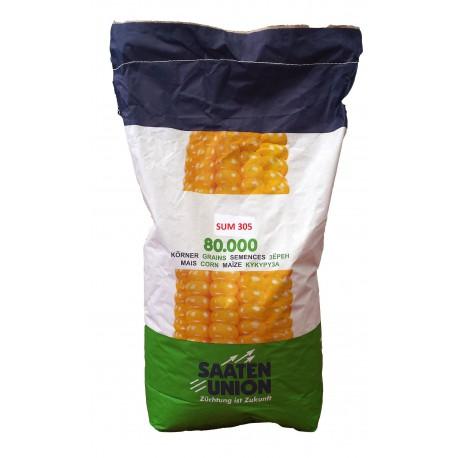 Seminte porumb SUM 305 - Saaten Union (FAO 350)