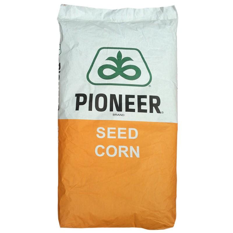 Seminte porumb Pioneer P9911 Aquamax - 80.000 boabe