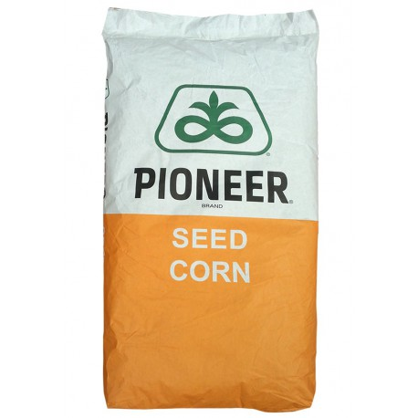 Seminte porumb Pioneer P0023 Aquamax - 80.000 boabe
