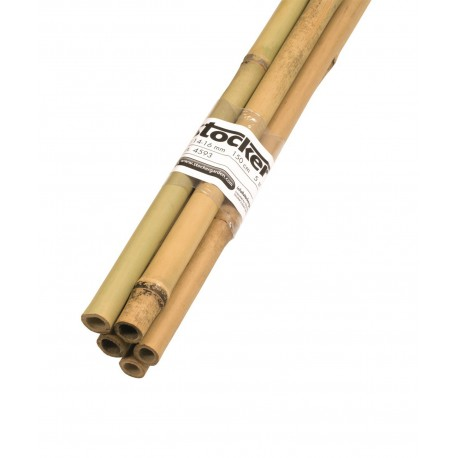 Tutori din bambus (180 cm)