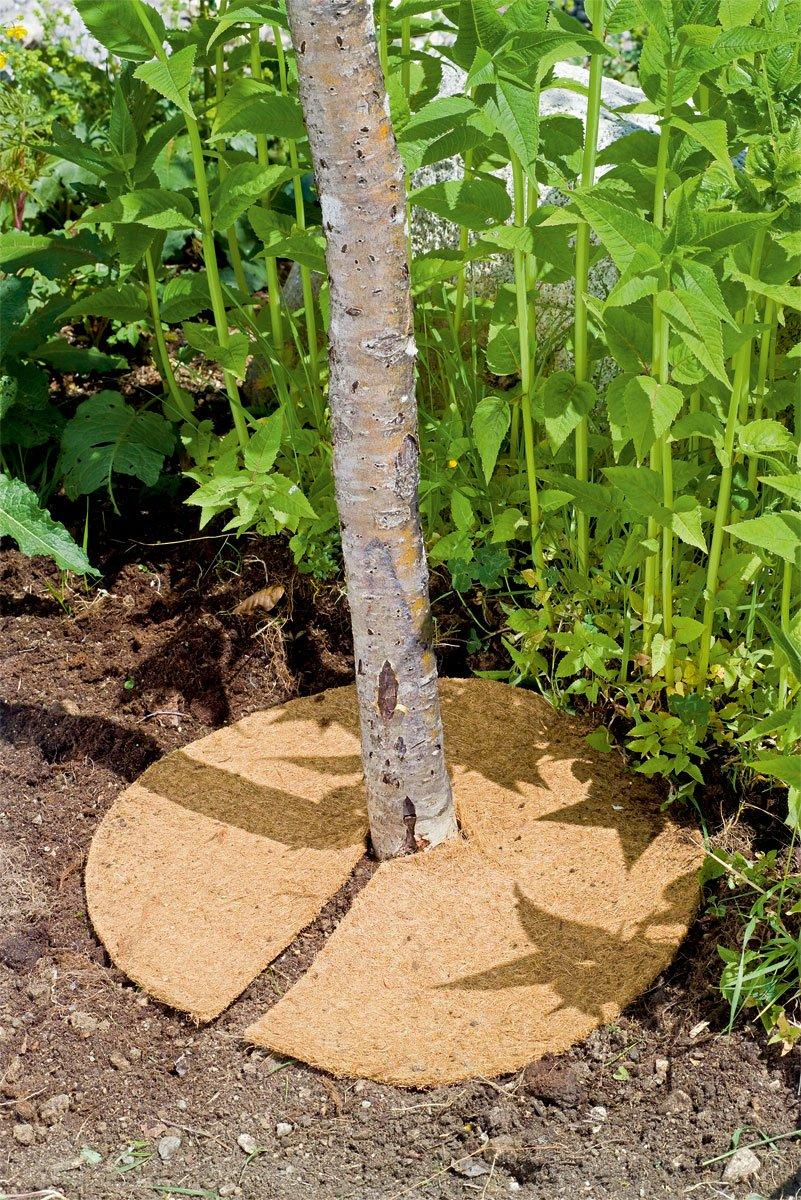 Disc din fibra de nuca de cocos pentru mulcire 600 gr