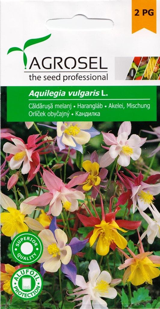 Seminte flori Caldarusa melanj Agrosel - Verdon