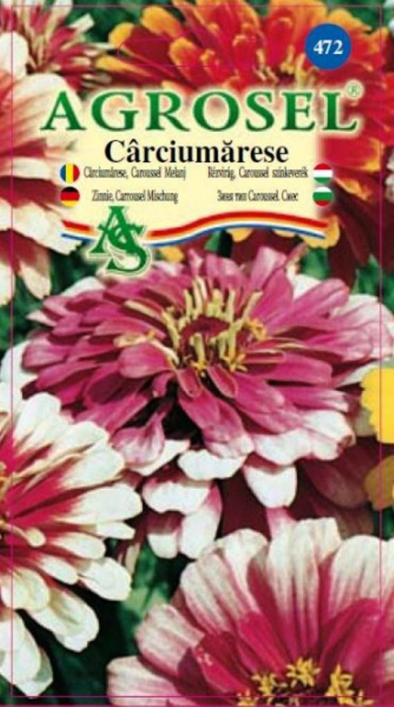 Seminte flori Carciumarese Caroussel melanj Agrosel - Verdon