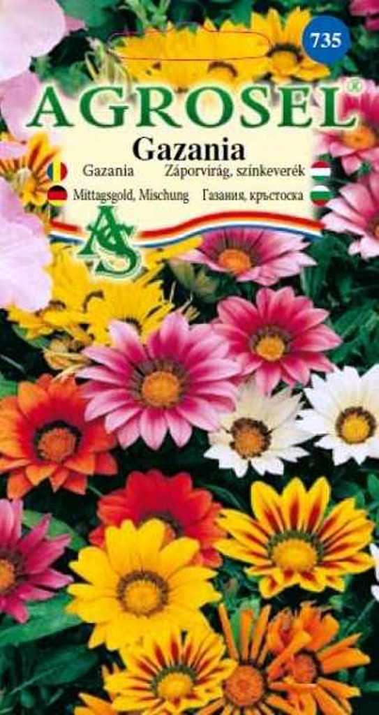 Seminte flori Gazania melanj Agrosel - Verdon