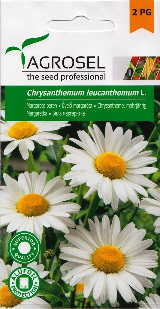 Seminte flori Margarete perene Agrosel