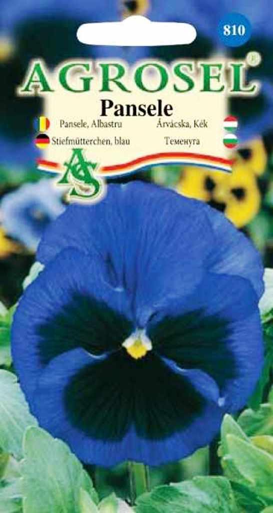 Seminte Pansele albastre Agrosel - Verdon