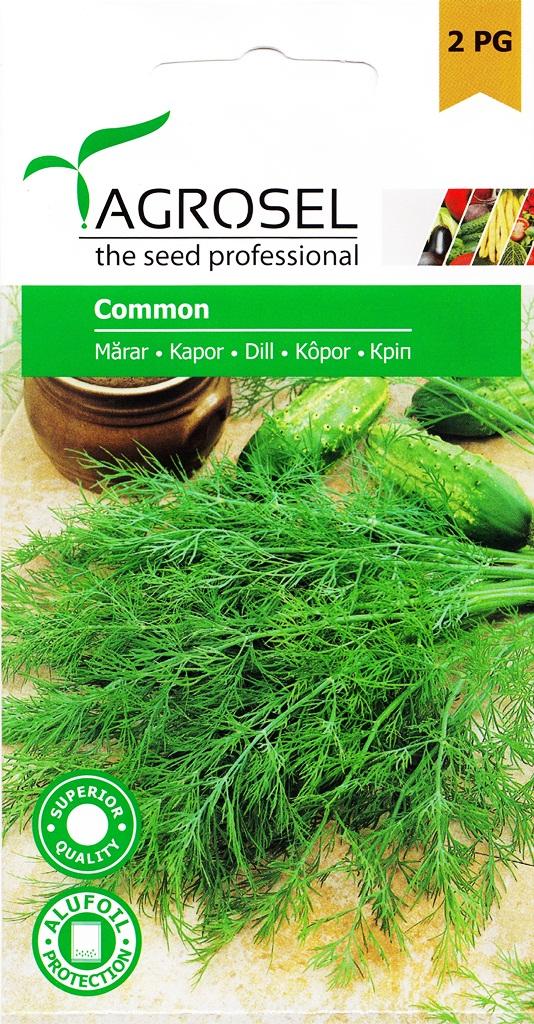 Seminte de cimbru Common - Agrosel