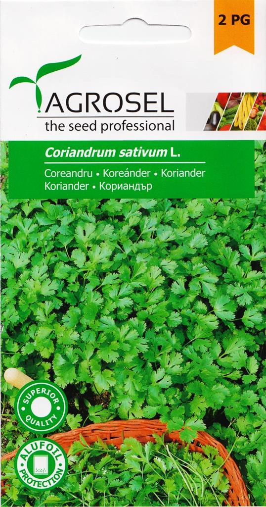 Seminte de coriandru Agrosel - Verdon