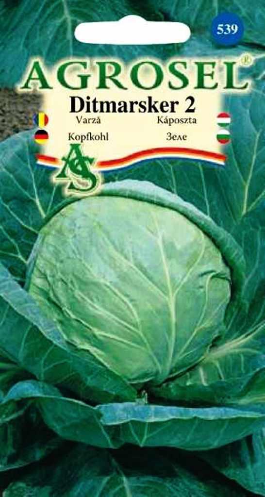 Seminte de varza Ditmarsker 2 - Agrosel
