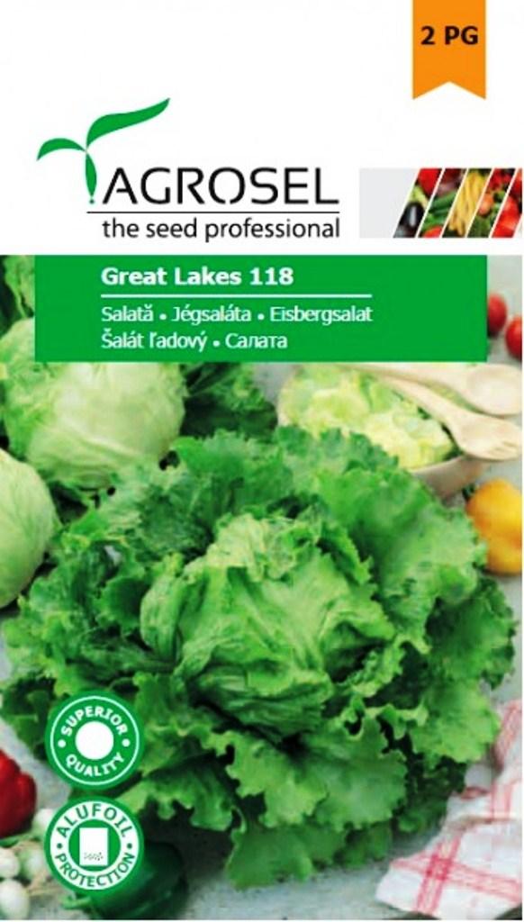 Seminte de salata Great Lakes - Agrosel