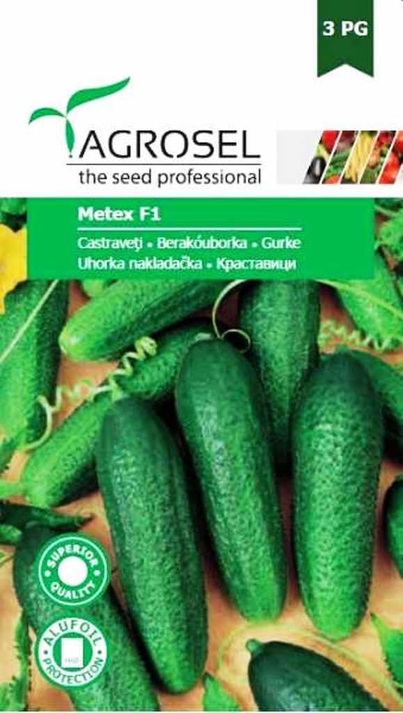 Seminte de castraveti Metex - Agrosel