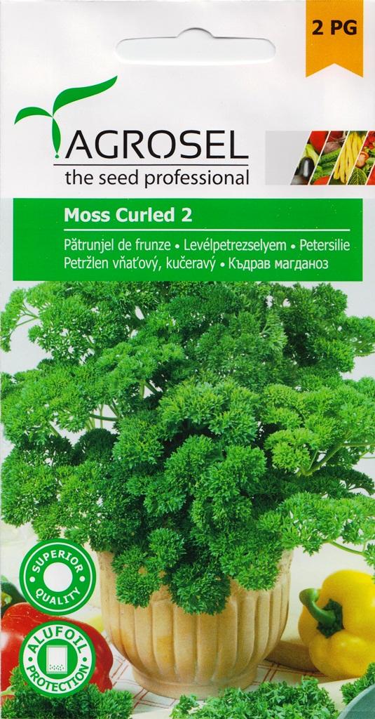 Seminte de patrunjel frunze Moos Curled - Agrosel