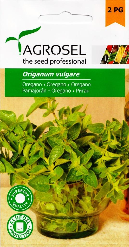 Seminte de oregano Agrosel - Verdon
