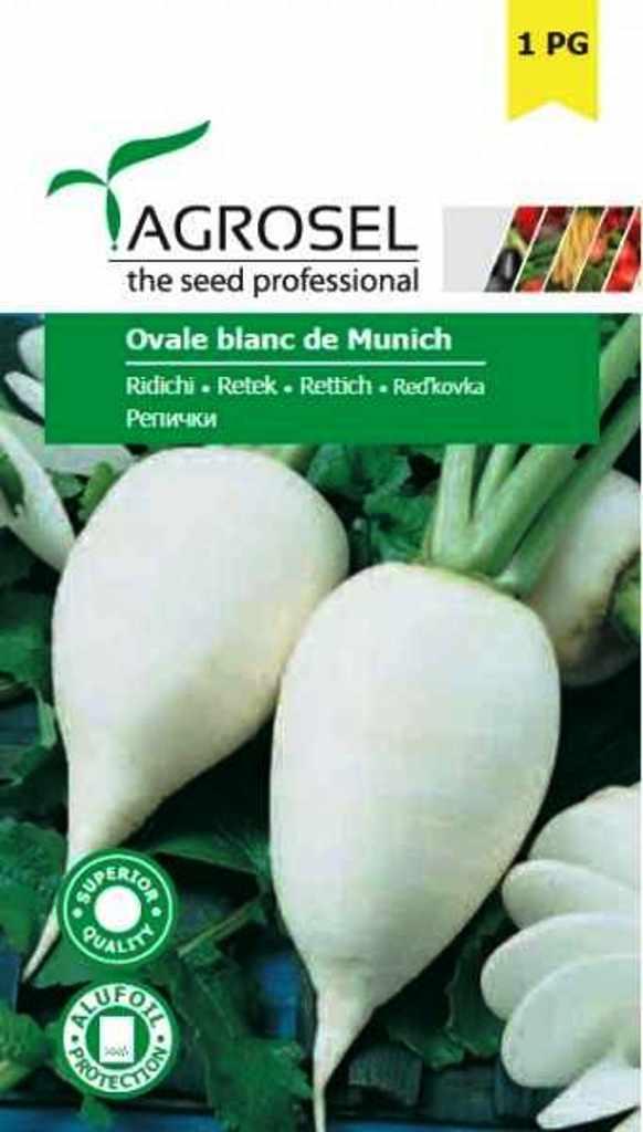 Seminte de ridichi Ovale Blanc de Munich