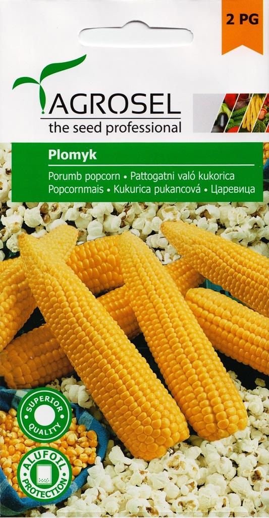 Seminte de porumb popcorn Plomyk - Agrosel