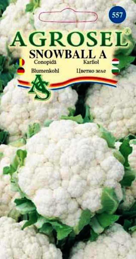 Seminte de conopida Snowball A - Agrosel