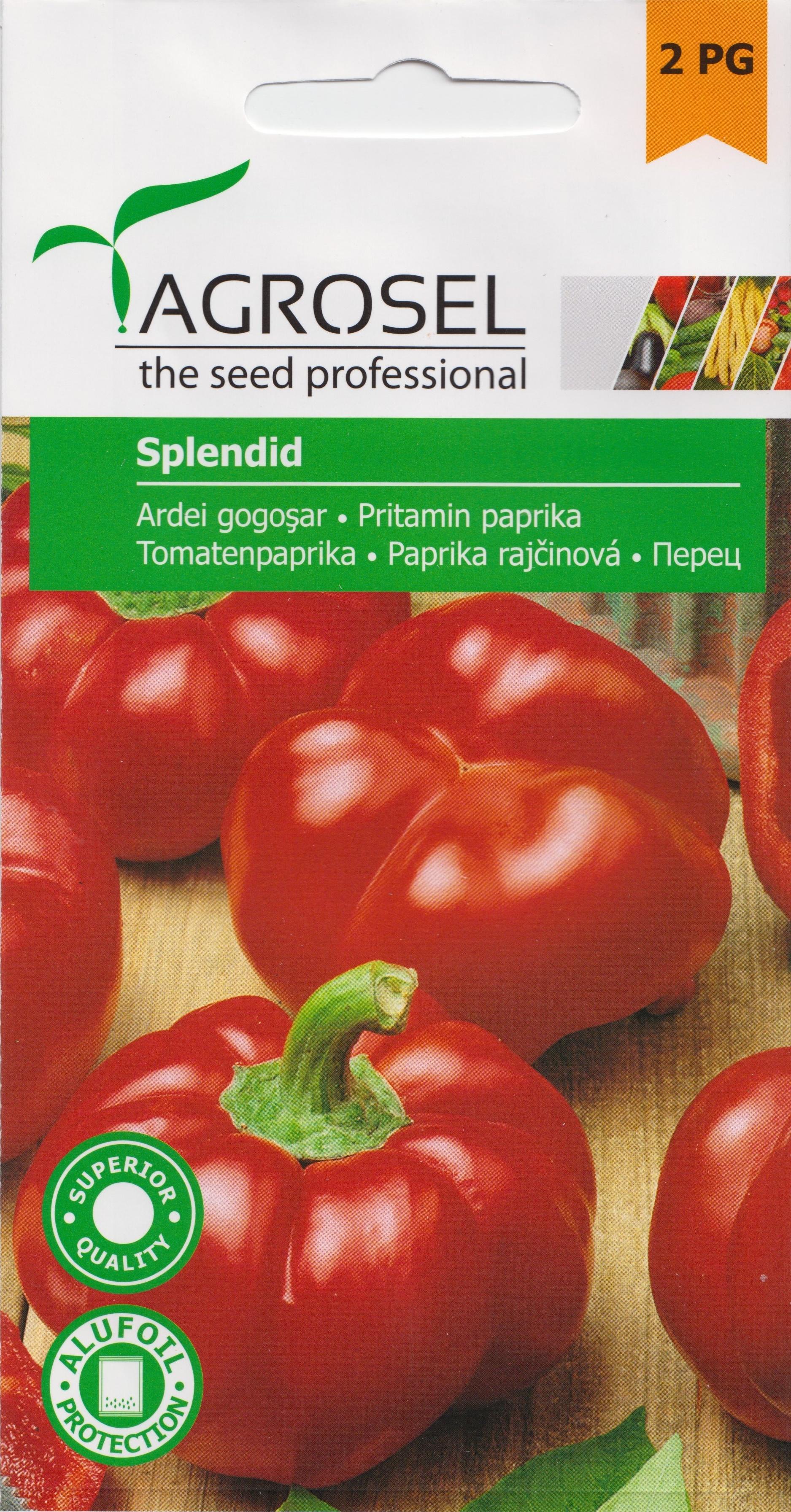 Seminte Agrosel ardei gogosar Splendid - Verdon