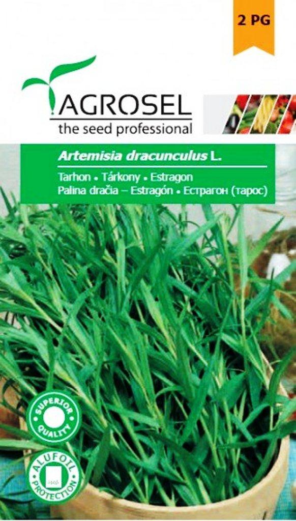 Seminte de tarhon - Agrosel