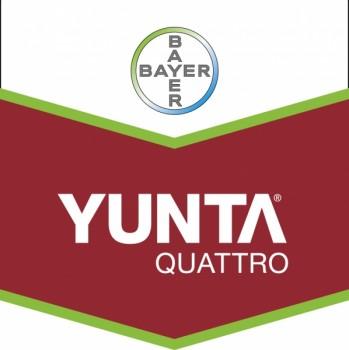 Verdon - Logo Yunta Quattro