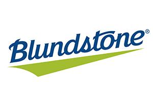 Ghete Blundstone Model 500