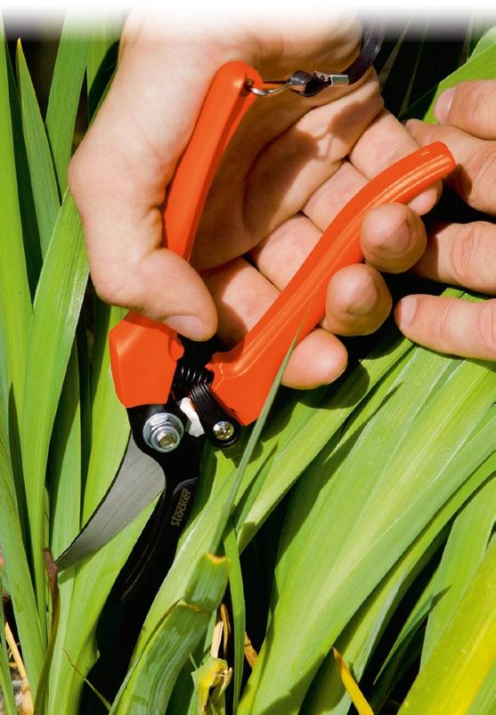 Foarfeca profesionala pentru recoltare cu lama curbata 18 cm