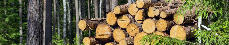 Clupe forestiere Nestle, Haglöf, Husqvarna