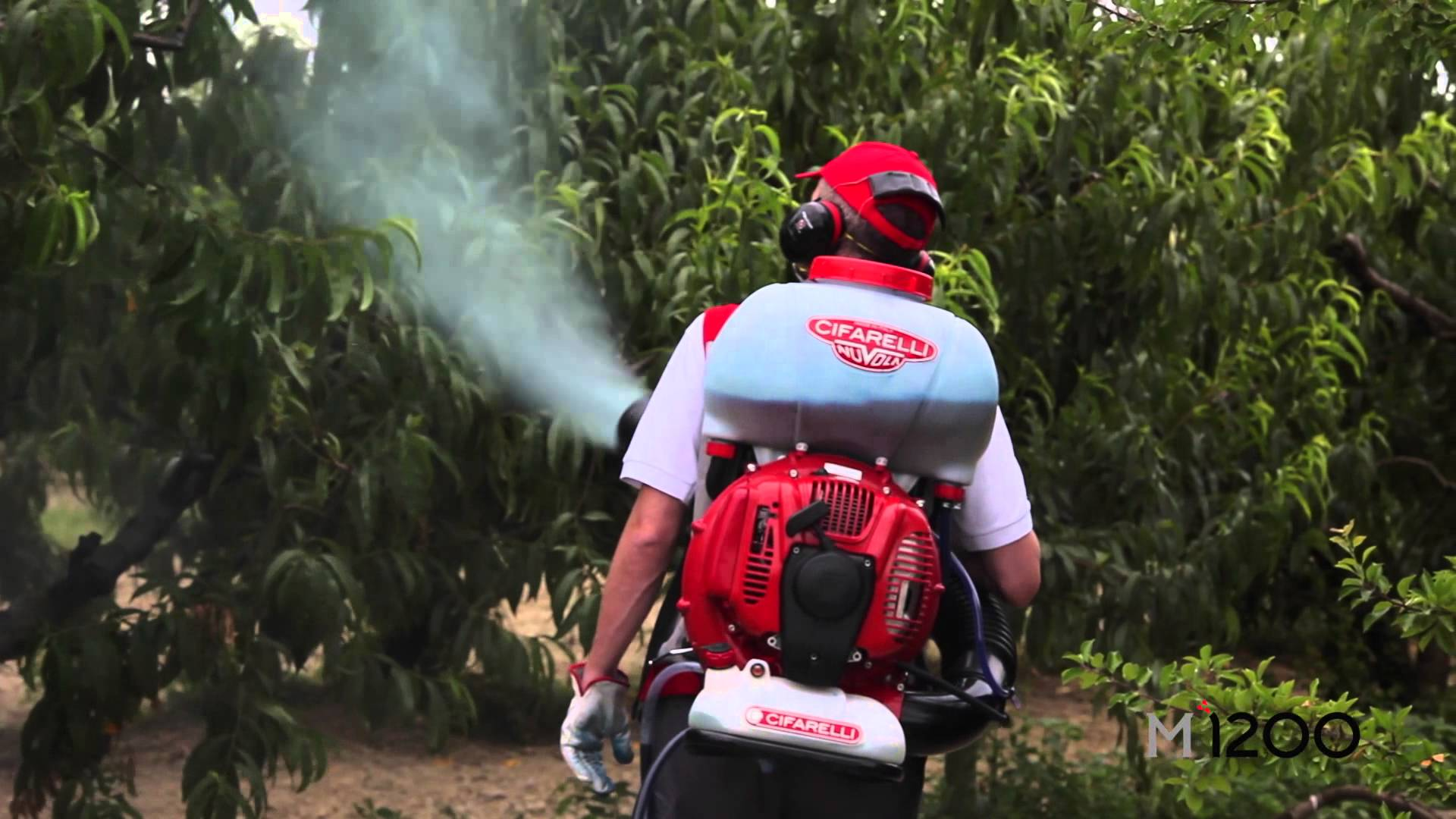 Atomizor Cifarelli in pomicultura - Verdon