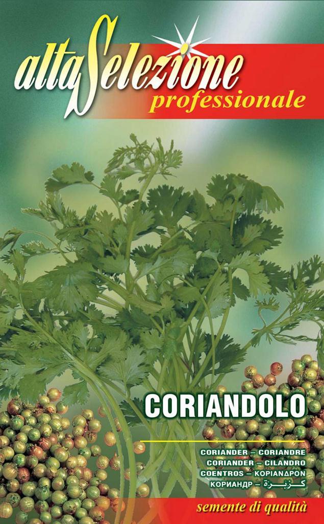 Seminte coriandru