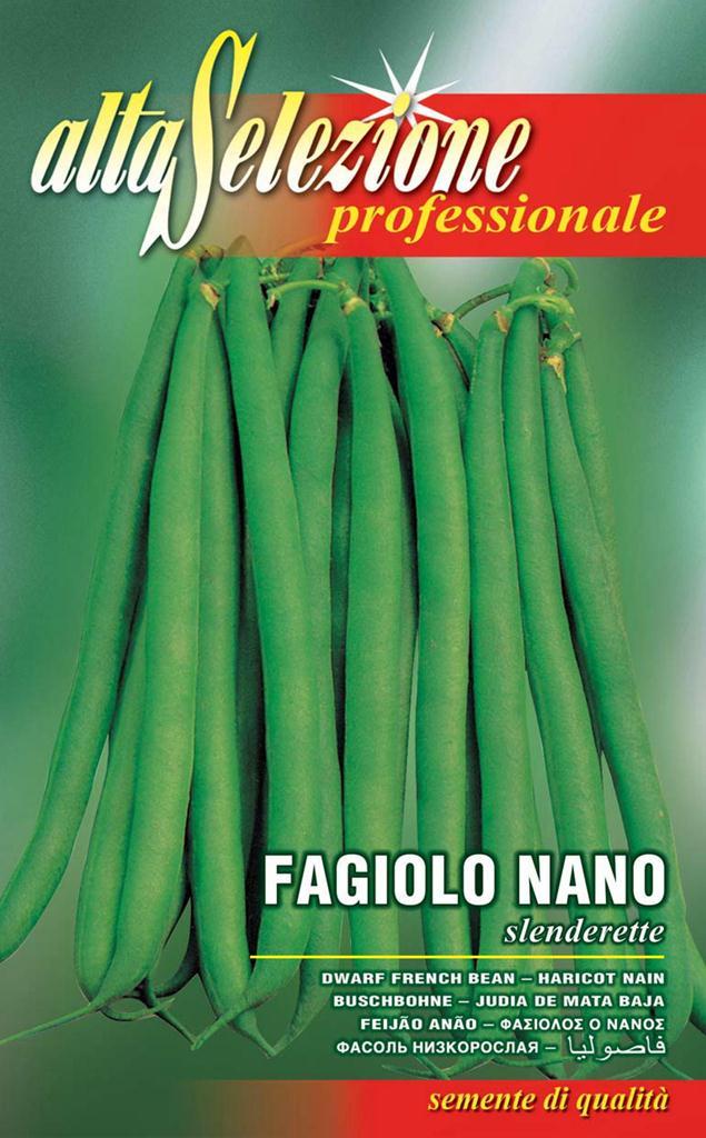 Fasole oloaga fideluta verde - Slenderette