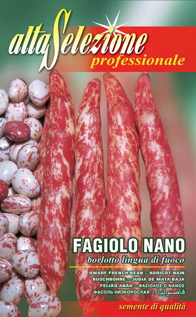 Fasole oloaga lata pestrita - Borlotto Lingua Di Fuoco