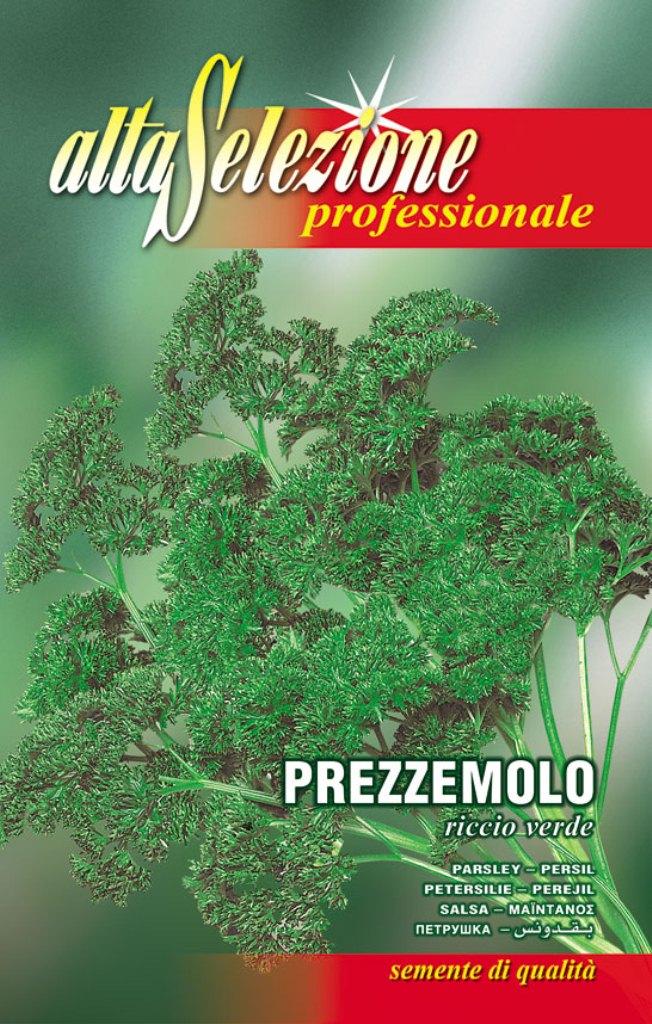 Patrunjel de frunze Riccio Verde