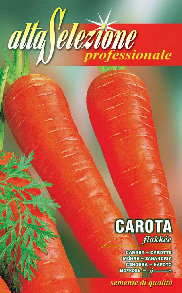 Seminte morcovi Flakkee