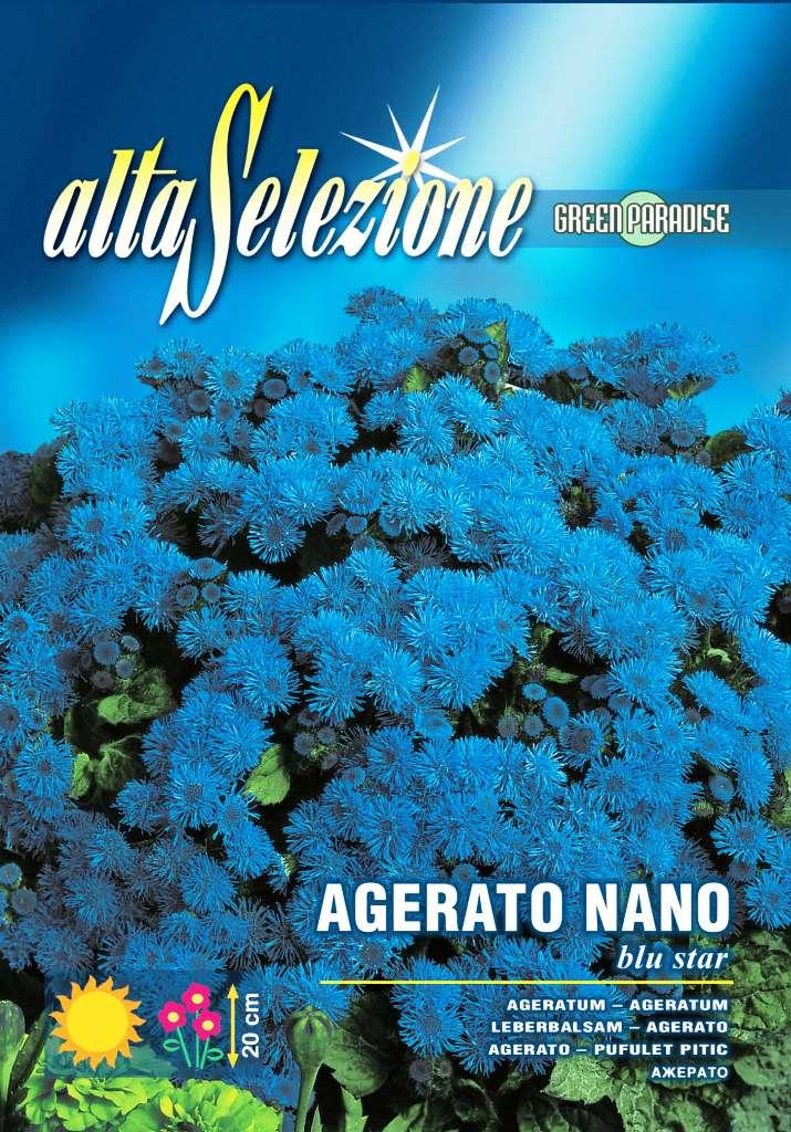 Verdon - Seminte pufuleti stea albastra