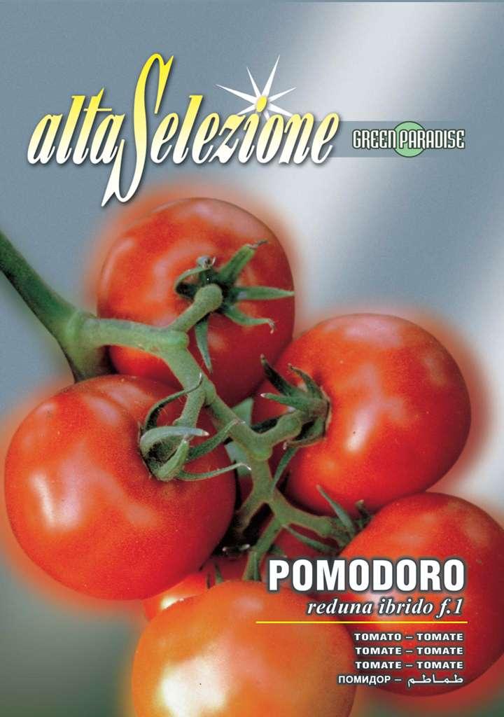 Seminte hibrid tomate Reduna F1 - 0,15 gr.